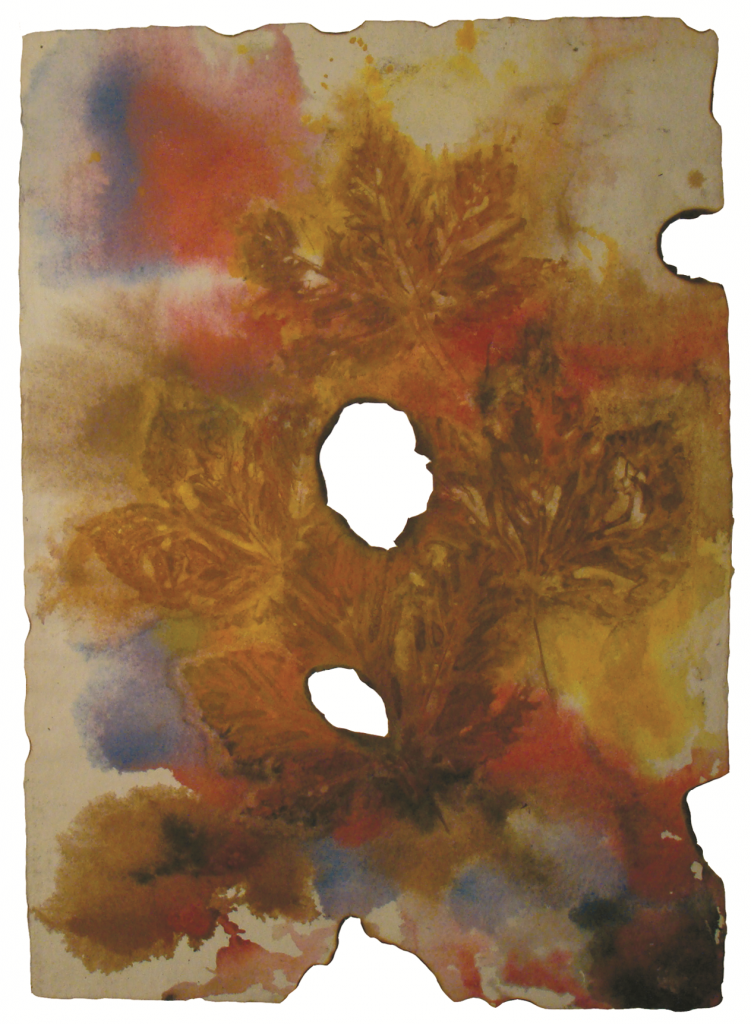 Izgoreli list - dr Đorđe Radak